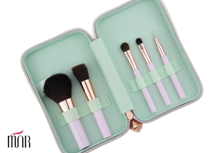 Beauty Brush With Waterproof  Bag Package 5 piece Personal Brush
